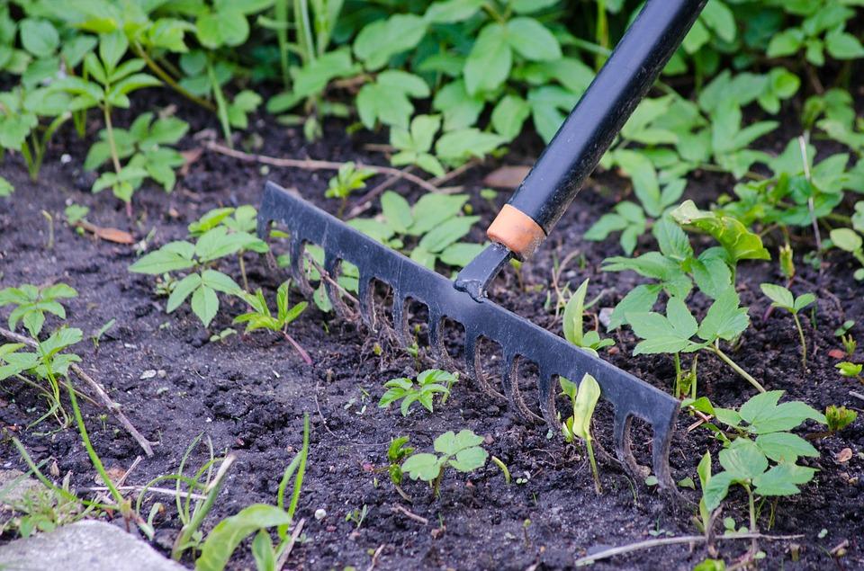 Photo râteau dans un jardin