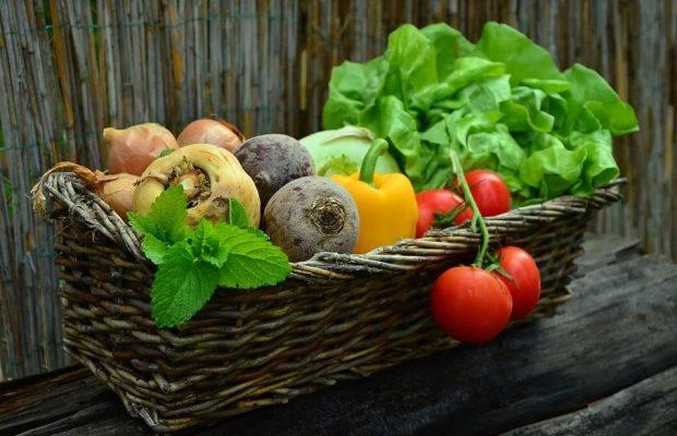 familles variétés plantes - ma permaculture