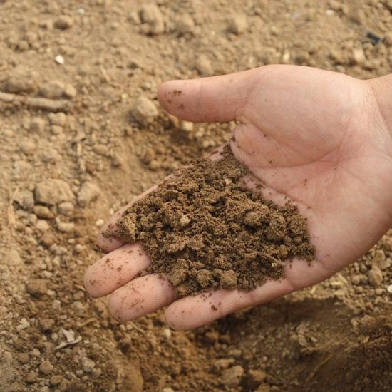 enrichir son sol avec ma permaculture